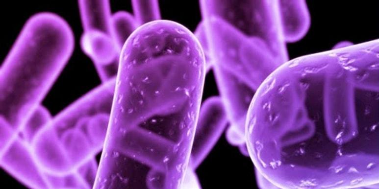 Contaminantes Microbiológicos del Agua.