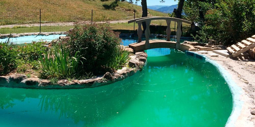 tratamiento de piscinas agua verde tejar viejo